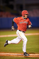 Ball State Cardinals right fielder Alex Call (8) runs to first during a game against the Wisconsin-Milwaukee Panthers on February 26, 2016 at Chain of Lakes Stadium in Winter Haven, Florida.  Ball State defeated Wisconsin-Milwaukee 11-5.  (Mike Janes/Four Seam Images)