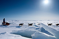 Middie Johnson runs on the Bering Sea ice after leaving the Elim checkpoint during the 2010 Iditarod