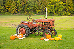 Winslow Farms, Pittsford, VT. 1940's McCormick Farmall Culti-Vision A tractor with pumpkin display