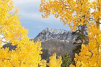 Fall landscape near Lake City