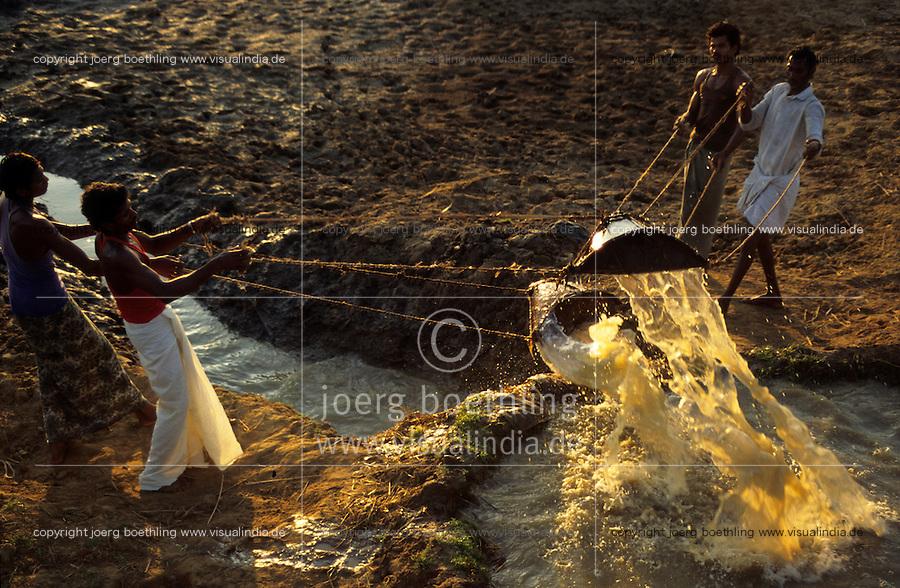 INDIEN Andhra Pradesh, Bauern bei traditionelle Bewaesserung ihrer Felder , Methode Lift irrigation / INDIA Andhra Pradesh , farmer doing lift irrigation at farm