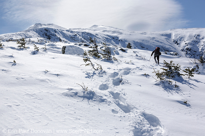 A lone winter hiker ascending the snow-covered Air Line Trail in the White Mountains, New Hampshire during the winter months.