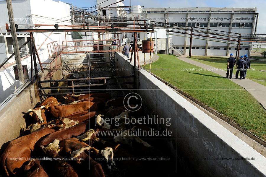 URUGUAY slaughterhouse of MAFRIG Group in Tacuarembo , meat steak and hamburger production from cow meat for export / URUGUAY Schlachthof der MARFRIG Gruppe, ein brasilanisches Unternehmen, in Tacuarembo, Herstellung von Rindfleisch Steakfleisch Hamburger fuer den Export