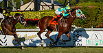 January 23, 2021: Tide of the Sea, #7, ridden by Tyler Gaffalione, wins the W. L. McKnight Stakes during Pegasus World Cup Invitational Day at Gulfstream Park in Hallandale Beach, Florida. Scott Serio/Eclipse Sportswire/CSM