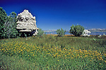 Tufa Formations At Mono Lake
