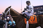 Will Take Charge and jockey Luis Saez in the winners circle at Churchill Downs after G1 Clark Handicap.<br /> November 29, 2013.