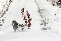 Ed Iten dumps sled on icy patch on road into Ruby Chkpt during 2006 Iditarod Alaska Interior Winter