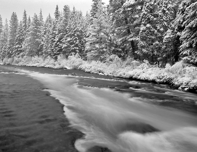 Metolius River with fresh snow. Oregon