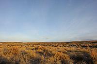 Sagebrush habitat of the Gunnison Sage-Grouse. Gunnison County, Colorado. April.