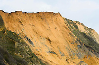 BNPS.co.uk (01202 558833)<br /> Pic: Graham Hunt/BNPS<br /> <br /> People ignoring safety advice to keep clear of the huge cliff fall at Seatown in Dorset.<br /> <br /> Visitors on the cliff top getting close to the crumbling cliff edge above the recent huge landslide.
