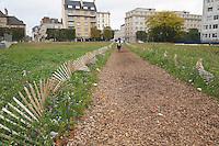 Plantation temporaire la ou sera edifiee la Cite Internationale - 30.000€