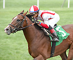 Takeover Target (no. 5), ridden by Jose Ortiz and trained by Chad Brown, wins the 41st running of the grade 3 Hill Prince Stakes for three year olds on October 03, 2015 at Belmont Park in Elmont, New York.  (Bob Mayberger/Eclipse Sportswire)