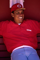 SAN FRANCISCO, CA - Portrait of Tony Perez of the Cincinnati Reds the dugout before a game against the San Francisco Giants at Candlestick Park in San Francisco, California in 1987. Photo by Brad Mangin
