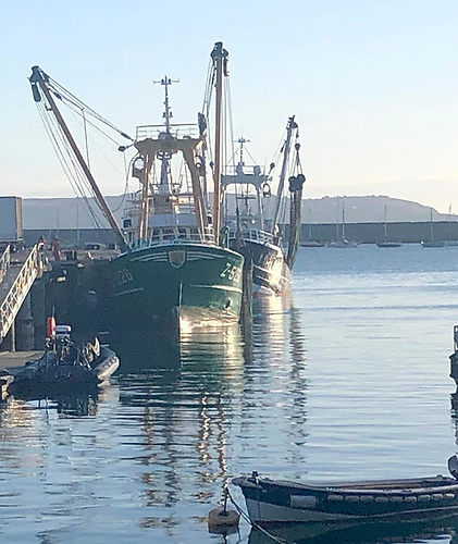 Dun Laoghaire Harbour is proving a convenient and well-serviced location for Belgian fishing trawlers
