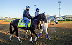 April 26, 2021: Rock Your World, trained by trainer John Sadler, exercises in preparation for the Kentucky Derby at Churchill Downs on April 26, 2021 in Louisville, Kentucky. Scott Serio/Eclipse Sportswire/CSM