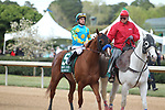 HOT SPRINGS, AR - APRIL 14: Solomini #5, with jockey Flavien Prat aboard before crossing the finish line in the Arkansas Derby at Oaklawn Park on April 14, 2018 in Hot Springs, Arkansas. (Photo by Justin Manning/Eclipse Sportswire/Getty Images)