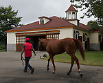 2012 Kentucky Derby winner I'll Have Another arrives at his new home, Big Red Farm, in Hokkaido Japan