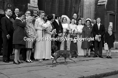 Wedding group waiting for the dog to walk past before the photograph of the happy occasion is taken, Notting Hill London 1970.