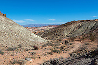 Valley of Fire, Nevada.  Trail to The Fire Wave.  Barrel Cactus left of center.