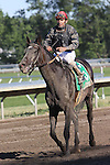 """07 03 2010: Gone Astray with Cornelio Velasquez with the Grade III Salvator Mile, at 1 mile, at Monmouth Park, Oceanport, NJ.  Trainer Claude """"Shug"""" McGaughey, III.  Owner Phipps Stable."""