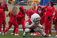 The Rutgers Scarlet Knight mascot and cheerleaders dance during a break. The Pitt Panthers defeat the Rutgers Scarlet Knights 27-6 on Saturday, November 24, 2012 at Heinz Field , Pittsburgh, PA.