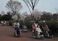Old people crowd a park in Higashimurayama, outside Tokyo. A quarter of Tokyo's population will be over 65 in three years time..