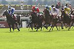 .Gentoo wins the race. Jockey Gerald Mosse Owner : S TRipier Mondancin. Trainer : Lyon (S)