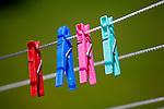 Clothespin, clothespeg, clothes peg, clothes pin, Wäscheklammer, Alp Pradamee, Malbun, Liechtenstein.