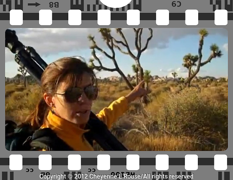 """VIDEO: When I am on the road sometimes I shoot video and have been doing that for the last few years - my videos have become a fun web series called, """"Cheyenne's VERY Cool Life"""" and I have quite the following from my Facebook page - they even ask me when the next video is coming out! I love sharing the amazing sights I am so fortunate to see and photograph. Join me on the road! <br /> <br /> Joshua Tree National Park episode: <br /> http://youtu.be/BVZpWa1GVR4"""
