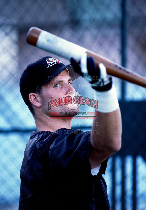 Russell Branyan of the Buffalo Bisons during the 1998 AAA Championship Series against the New Orleans Zephyrs at Cashman Field in Las Vegas, Nevada. (Larry Goren/Four Seam Images)