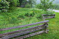 Rustic split rail fence between road and front yard rain garden meadow lawn substitute in Taylor garden