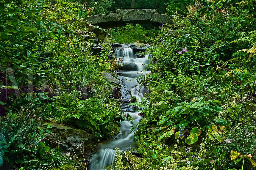 gently meandering stream.
