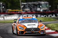 #65: Murillo Racing Mercedes-AMG GT GT4, GS: Tim Probert, Brent Mosing