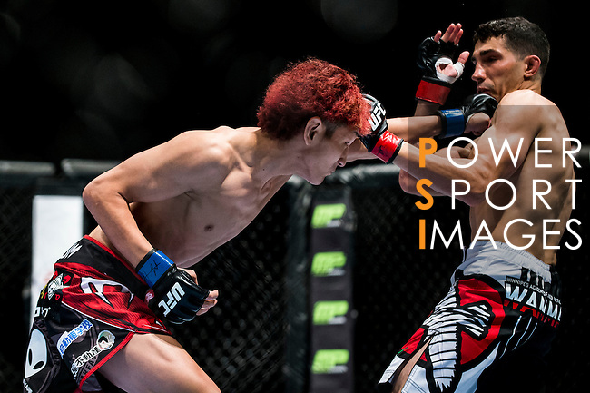Roland de Lorme of Canada vs Yuta Sasaki of Japan during their bantamweight bout fight as part of the UFC Fight Night Macao on August 23, 2014 at the Venetian in Macao, China. Photo by Victor Fraile / Power Sport Images
