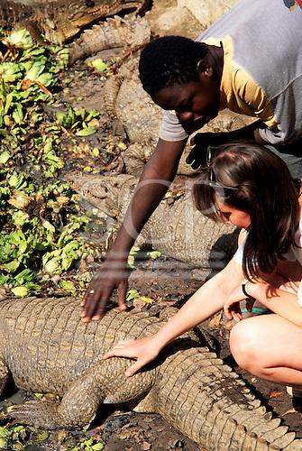 Banjul, The Gambia. Tourist touching a crocodile.