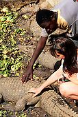 Banjul, The Gambia. Tourist touching a crocodile.