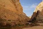 Ein Avdat in Wadi Zin