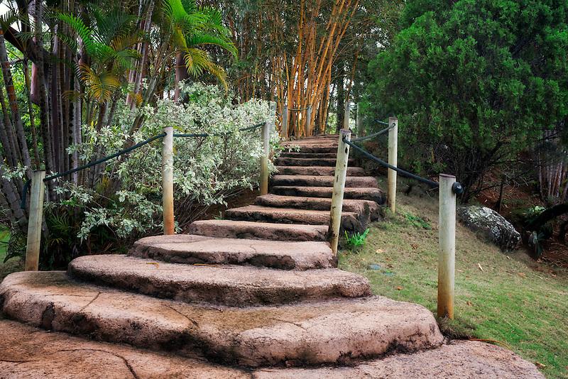 Path in Na Aina Kai Botanical Gardens, Kauai, Hawaii