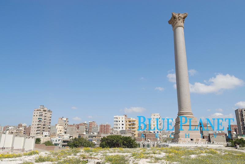 Pompey's Pillar in Alexandria Serapeum, Egypt