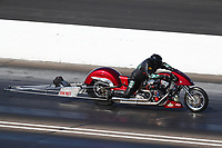 Aug 8, 2020; Clermont, Indiana, USA; NHRA top fuel nitro Harley Davidson motorcycle rider Tracy Kile during qualifying for the Indy Nationals at Lucas Oil Raceway. Mandatory Credit: Mark J. Rebilas-USA TODAY Sports