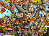 Lori, LANDSCAPES, LANDSCHAFTEN, PAISAJES, paintings+++++Owl Family Reunion_2_72,USLS258,#l#, EVERYDAY ,puzzle,puzzles