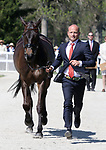 LEXINGTON, KY - April 26, 2017. Winners of the 2015 and 2016 Rolex Three Day Event, #54 Fischerrocana FST and Michael Jung from Germany at the Rolex Three Day Event First Horse Inspection at the Kentucky Horse Park.  Lexington, Kentucky. (Photo by Candice Chavez/Eclipse Sportswire/Getty Images)