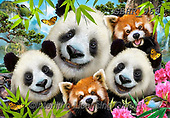 Howard, SELFIES, paintings+++++,GBHR969,#selfies#, EVERYDAY ,panda,pandas ,puzzle,puzzles