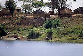 Kabinga, Zambia. Village with small arable vegetable plot and thatched adobe houses beside Lake Chaya.