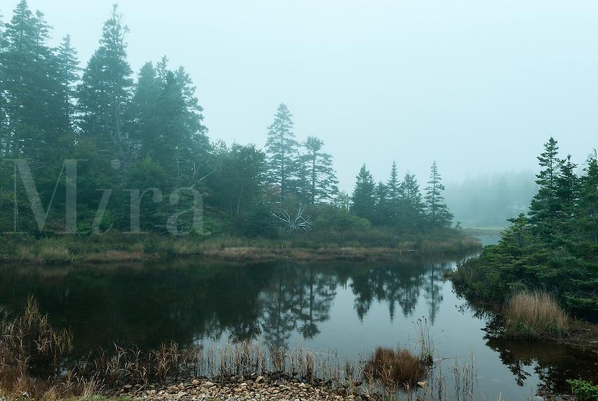 Coastal scenic, Tremont, Maine, USA