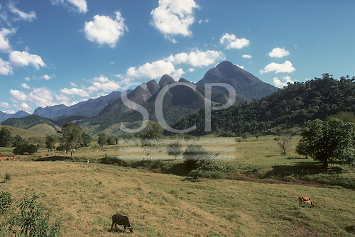 Serra dos Orgaos, Rio de Janeiro State, Brazil. Typical farmland in area of Mata Atlantica - Atlantic Rain Forest, with some forest remaining on the foothills, cattle pasture.