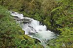 Cascading waterfall on Sweet Creek; Siuslaw National Forest, Coast Range Mountains, Oregon.