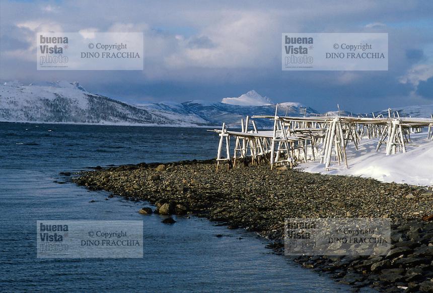 - Norway, landscape in the outskirtses of Narvik, structure for cod drying....- Norvegia, paesaggio nei dintorni di Narvik, struttura per l'essiccazione del merluzzo..