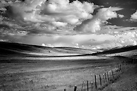 Pasture clouds and fence. Zumwalt Prairie Preserve, Oregon,cow,cows