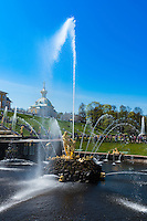 Samson Fountain In Peterhof, Saint Petersburg, Russia